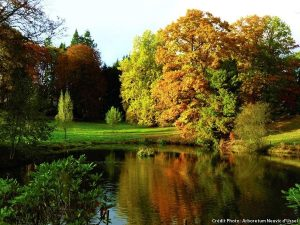 Quand l'amérique et l'angleterre s'invitaient dans nos parcs et jardins : découverte en corrèze. 11